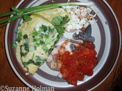omelet on plate by Suzanne Holman