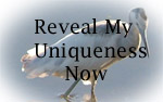 reveal my uniqueness button